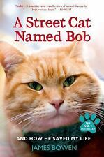 A Street Cat Named Bob : And How He Saved My Life by James Bowen Paperback Book