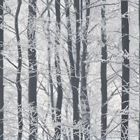 Arthouse Frosted Wood Glitter Black and White Silver Birch Tree Wallpaper 670200