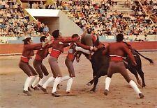 BR71941 corrida toros bull sport portugal