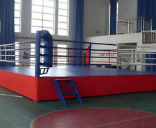 20'x20' Commercial Boxing Ring Pro MMA Cage UFC Octagon Wrestling Mat 400 sqft