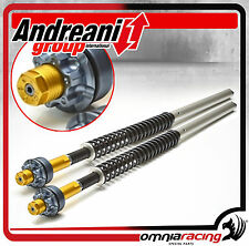 Kit Modifica Forcella Andreani 110/Y06 Cartridge Yamaha T Max 500 2008/2010