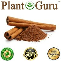 Cinnamon Powder 100% Pure Ground Cinnamomum Cassia Bulk Wholesale