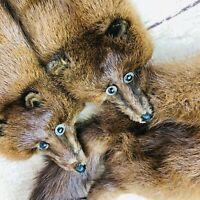 Vtg  50's Brown fur Mink Fur 4 Full Body Pelt Stole Scarf Shawl Wrap boa nice!