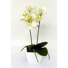 Artificial Silk Cream Mini Orchid in a Pot