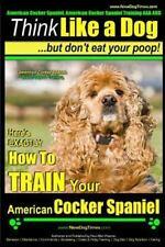 American Cocker Spaniel, American Cocker Spaniel Training Aaa Akc : Think Lik.