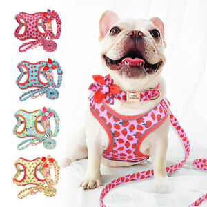 Reflective Dog Harness Leash and Collar Matching Sets With Name Personalized SML