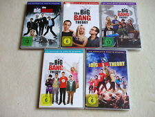 The Big Bang Theory - Staffel 1 - 5