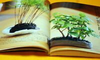 Japanese MINI SMALL BONSAI PHOTO BOOK from Japan rare #0004