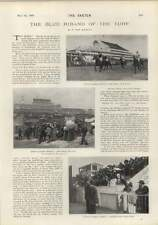 1900 THE DERBY BLUE RIBAND of Turf Diamond Jubilee