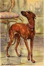 Italian Greyhound - Matted Dog Art Print - German / New U