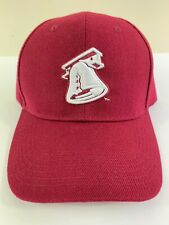 NEW LEHIGH VALLEY IRON PIGS BASEBALL HAT MAROON NEVER WORN LIBERTY BELL