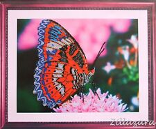 Butterfly Schmetterling Stickpackung Stickbild Stickset sticken Perlen 174