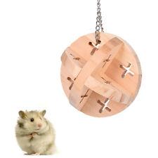 Small Animal Pet Hamster Hanging Ball Funny Toys Guinea Pig Chew Play Toy Ball