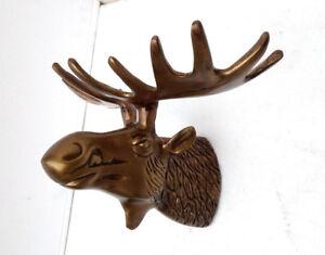 Moose ELK Alces