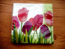 Tulip Spring in Bloom Creative Conterting Dinner Paper Napkins 2 ply 16 pcs