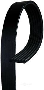 Serpentine Belt  ACDelco Professional  6K486