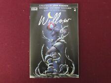 Buffy The Vampire Slayer Willow #4 Andolfo Variant