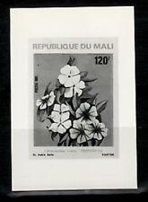 Photo Essay, Mali Sc418 Flower, Pervenche.