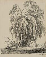 C.DILLIS (*1779), Weidenbaum über antikem Fragment, 1827, Federzeichnung