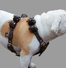 "8 Lbs Real Leather Weighted Pulling Dog Harness Exercise Training  33""-39"" Chest"