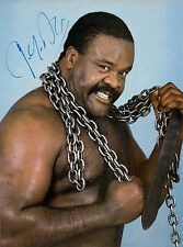 Junk Yard Dog Signed 8x10 Autographed Photo Reprint