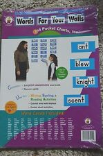 CARSON DELLOSA PUBLISHING Homophones Words for your Walls word cards NIP