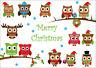 WEIHNACHTS-EULEN: lustige Weihnachtskarten im Set  5, 10, 15, 20, 30, 50,100 St.