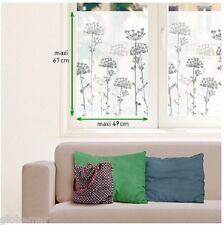 Adesivi vetri personalizzazione oscuranti pianta Ombrelle 2 tavole di 67 cm x 49