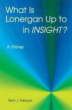 What Is Lonergan Up to in Insight?: A Primer (Zacchaeus Studies:-ExLibrary