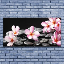 Leinwand-Bilder Wandbild Leinwandbild 140x70 Blumen Steine Pflanzen
