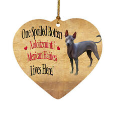 Spoiled Rotten Xoloitzcuintli Mexican Hairless Dog Christmas Ornament a3030
