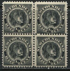 Newfoundland 1894 1/2 cent black Newfoundland Dog block of 4 mint NH