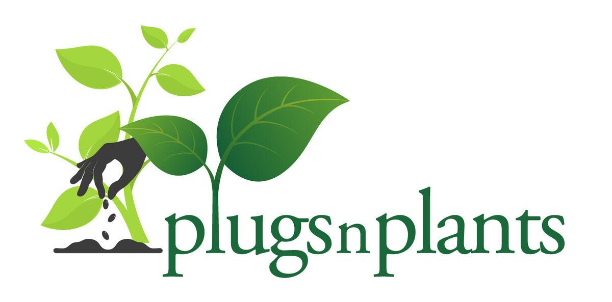PlugsnPlants