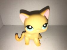 Littlest pet shop 855 AUTHENTIC yellow shorthair cat