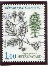 STAMP / TIMBRE FRANCE OBLITERE N° 2384 FLORE / FAGUS SYLVATICA