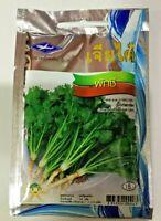 Cilantro Seed Coriander Leisure Parsley Thai Vetgetable 1110 seeds Free Shipping