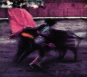 1948 Irving Penn Surreal Barcelona Bullfighting Torero Matador Photo Litho Art