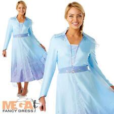 Princess Elsa Ladies Fancy Dress Frozen Disney Princess Adult Fairy Tale Costume
