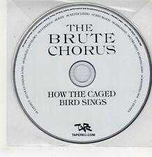 (GU105) How The Caged Bird Sings, The Brute Chorus - 2010 DJ CD