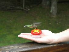Handheld 1 Oz Hummingbird Red Top Feeder - for hand feeding hummingbirds