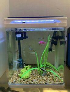 Camry Q3-320 5 gallon aquarium