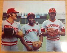 Big Red Machine Cincinnati Reds #9 8x10 photo 75 76 WS