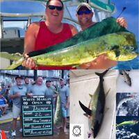 """18""""  Rainbow Splash Floating Spreader Bar with Chase Bait- Offshore Tuna Bird"""