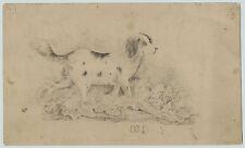 Rare -Super - American Folk Art Drawing - Cocker Spaniel? Dog ca 1850 Signed