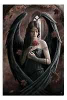 Laminated Anne Stokes Angel Rose Poster Official Licensed 24x36"