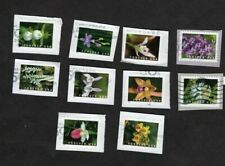 #5445-54 Wild Orchids, Used Set of 10, Forever (55 cent), On Paper