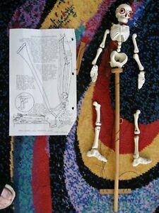 Vintage 1953 Disjointing Skeleton Pelham Puppets Marionette Halloween