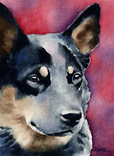 Australian Cattle Dog Watercolor Art Print 11 X 14 by Artist Djr w/Coa