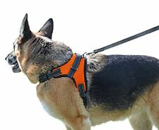 My Pets America Dog Harness - Leash Included, Reflective, Adjustable No Choke
