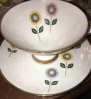 German Winterling Roseau Bavaria Cup & Saucer-White/W/Pink, Yellow Flowers